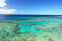原料の海水